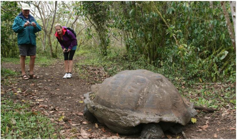 Machu Picchu - Galapagos