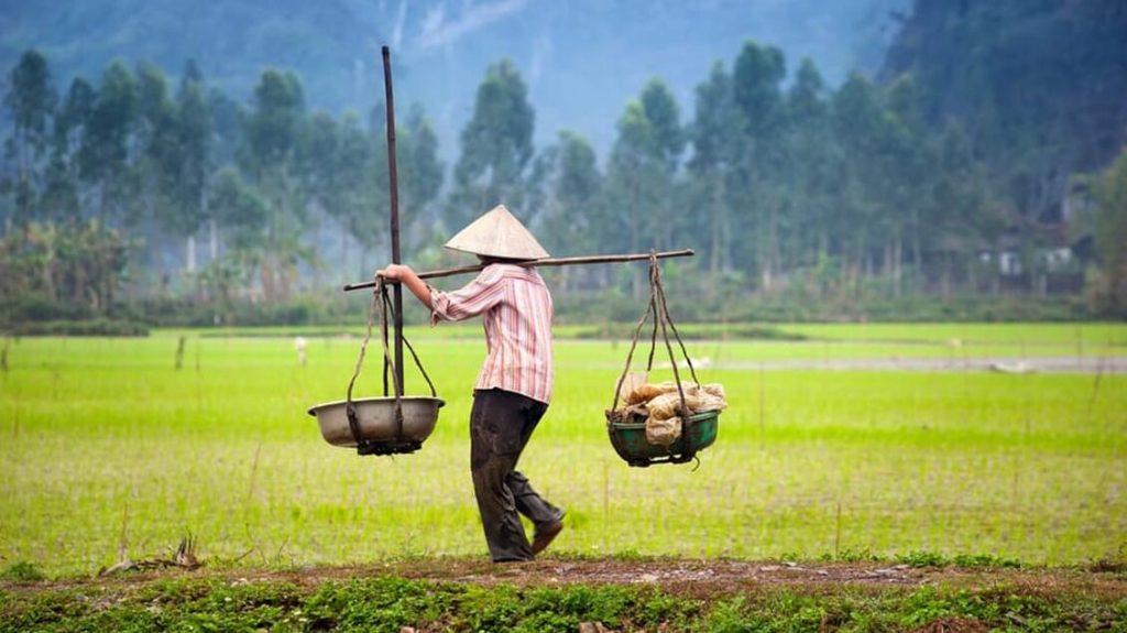 On an Adventure on Vietnam